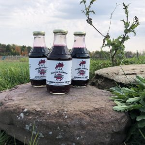"Three glass bottles with white labels reading ""aronia berry syrup, aronia berry and elderberry syrup, and elderberry syrup, sit on a rock in front of grass and a tree line"