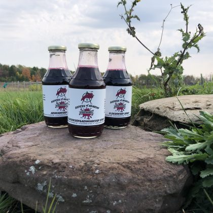 """Three glass bottles with white labels reading """"aronia berry syrup, aronia berry and elderberry syrup, and elderberry syrup, sit on a rock in front of grass and a tree line"""